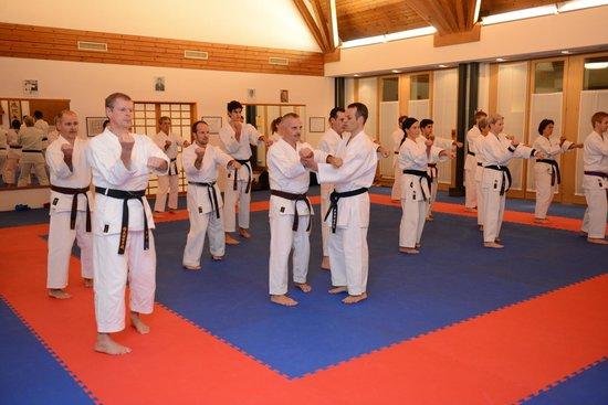 Karate Center Rapperswil: Kata Sanchin