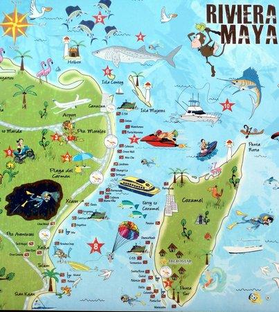 Riviera Maya siti di immersione Picture of Dressel Divers Puerto
