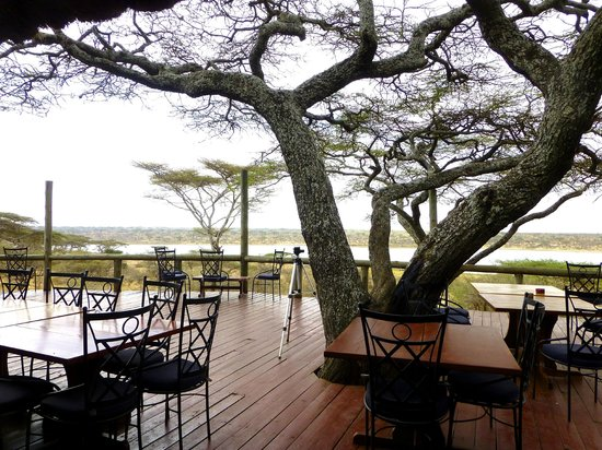 Masek Tented Camp : Patio overlooking Lake Masek