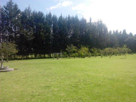 Hosteria San Carlos Tababela : Cancha de Futbol