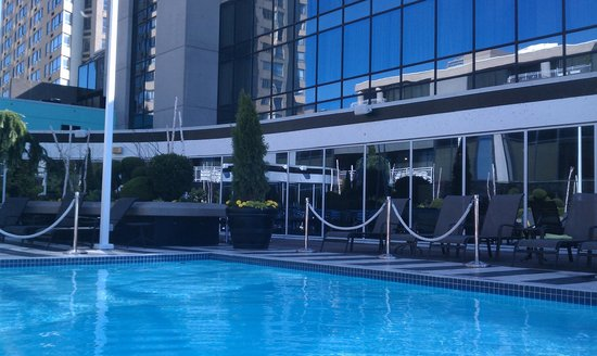 Radisson Admiral Toronto Harbourfront: The roof top pool