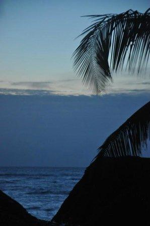 Luv Tulum: Early Morning Sun