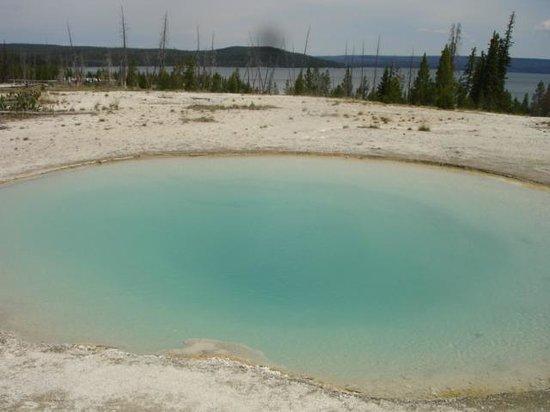 Yellowstone Lake: Hot springs