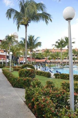 Barceló Solymar: La piscine