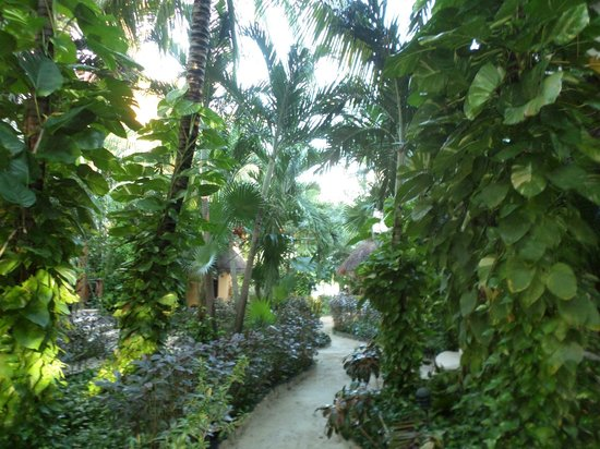 Villas HM Paraiso del Mar : Caminando desde la habitación a la playa
