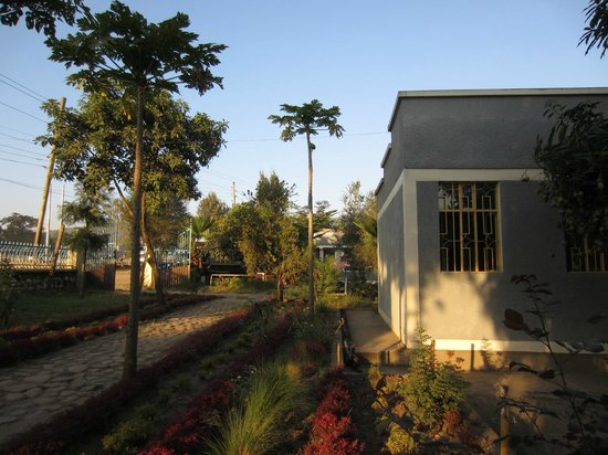 Goh Hotel : Hotel grounds