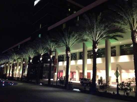 Hilton Anaheim : Front of hotel, lined with trees