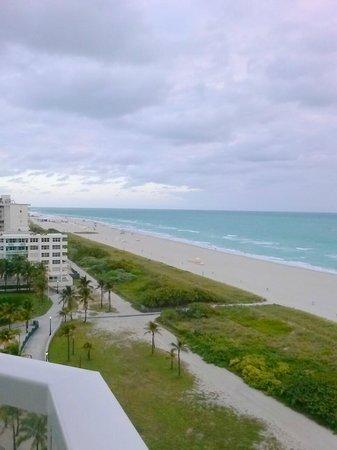 Marriott Stanton South Beach : Beach View