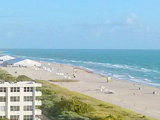 Marriott Stanton South Beach: Beach View