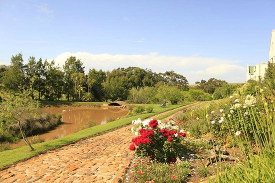 Peace Valley Guesthouse: View across a section of the garden and dam