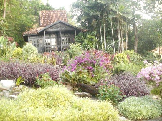 Berjaya Langkawi Resort - Malaysia: Forest Chalet