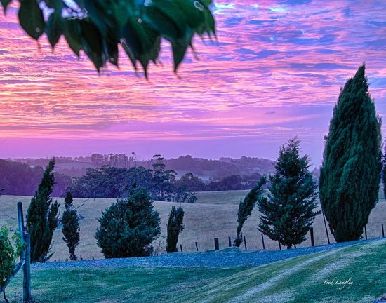 Takatu Lodge & Vineyard: Morning Sunrise