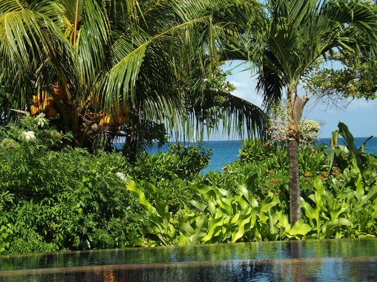 Raffles Seychelles : Pool to beach