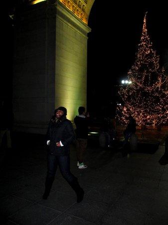 NYSee Tours : Washington Square Park