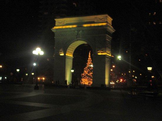 NYSee Tours : Tree at Washington Square Park