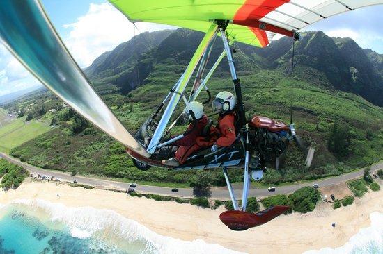Paradise Air : Nate
