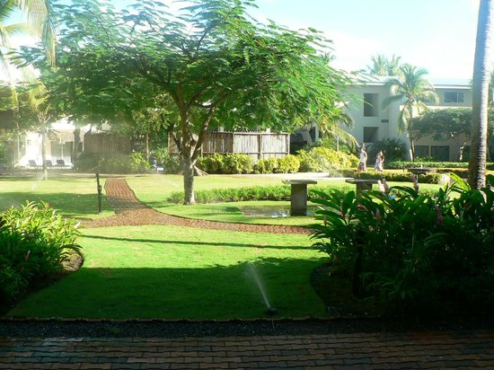 Doubletree Resort by Hilton, Central Pacific - Costa Rica : Courtyard area