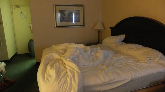 Quality Inn & Suites Mississauga: Messy bed but so comfortable