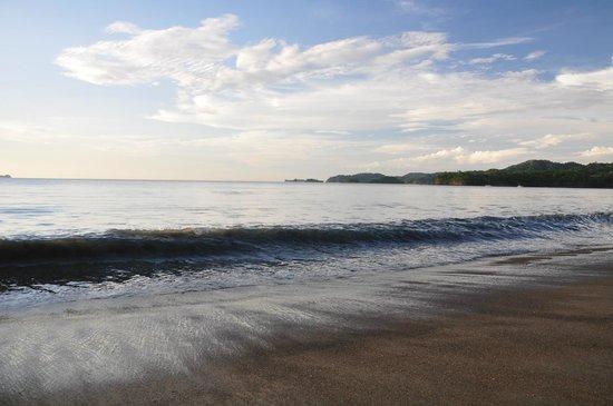 Bahia del Sol Beach Front Hotel & Suites: Beach