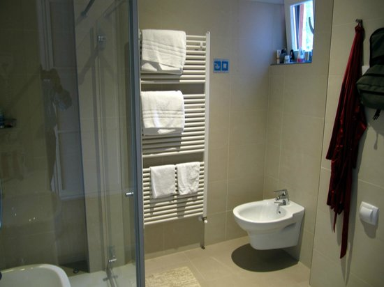 Hotel Ariston: Bathroom witrh a good shower and view over the mountain