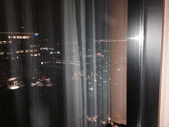 Hyatt Regency Dulles: Nice night time view of the Xmas lights.