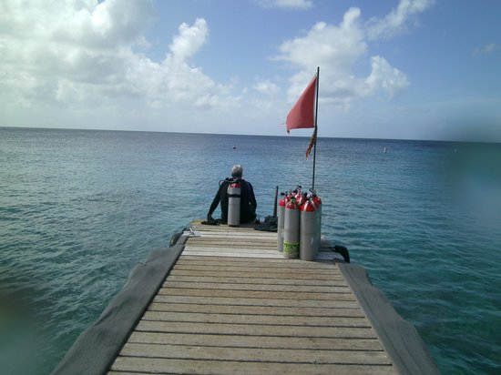 GO WEST Diving : View from the dive shop