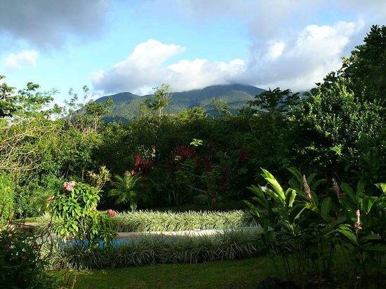 B&B Hotel Sueño Celeste : view of NP Tenorio
