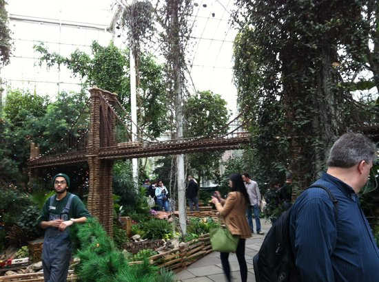 New York Botanical Garden : One of three bridges spanning the exhibit,constructed from organic materials available here