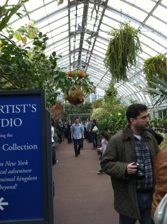 New York Botanical Garden : Inside the tropics, a world unfolds