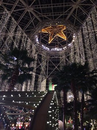 Gaylord Texan Resort & Convention Center: Atrium View