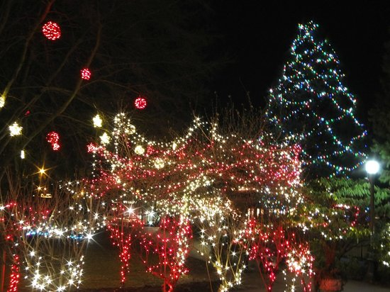 Burnaby Village Museum: Christmas lights