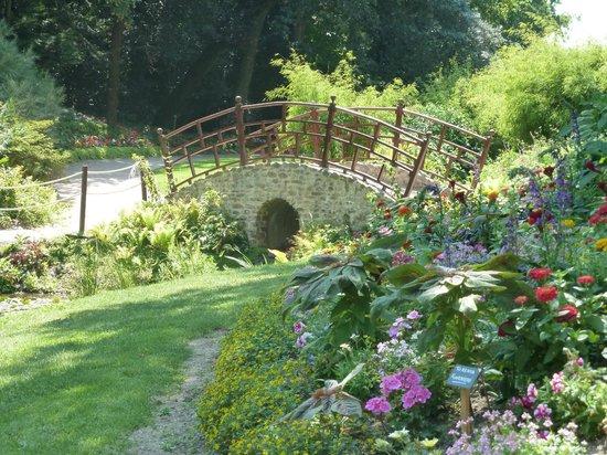 Parc Floral et Tropical de la Court d'Aron : le petit pont