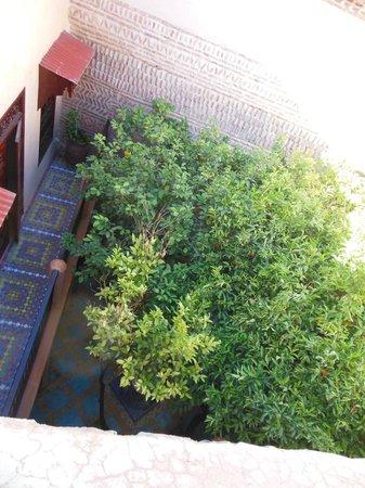 Riad Louaya : patio dal terrazo