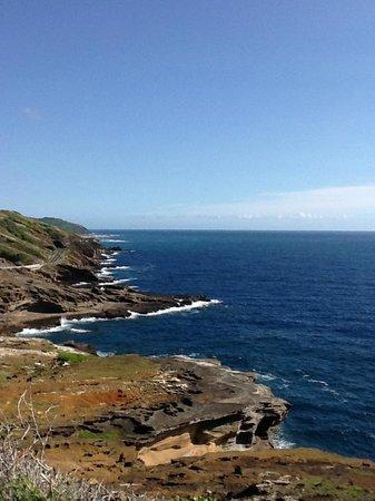 Hawaiian Style Rentals & Sales: Scenic Lookout