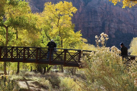 Zion Lodge: Bridge on the hike to Emerald Pools