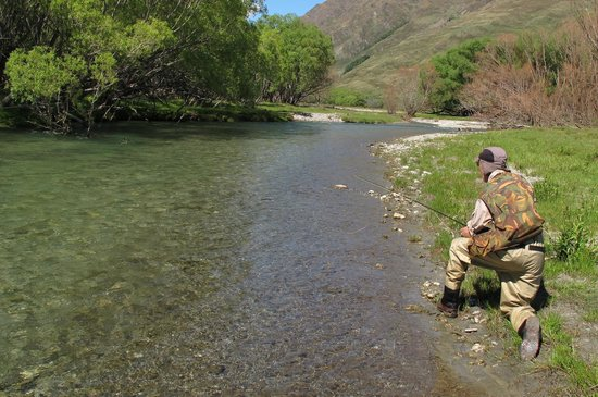 Trout Bohemia Guided Fly Fishing: Trout Bohemia fly fishing, the best of New Zealand trout 5