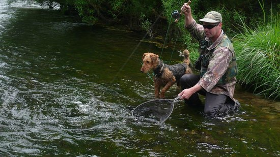 Trout Bohemia Guided Fly Fishing: Trout Bohemia fly fishing, the best of New Zealand trout 1