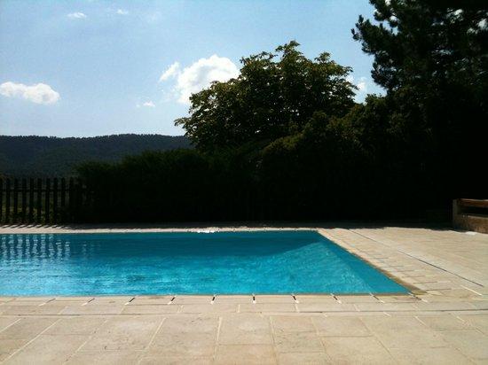 La Bastide de Moustiers : The pool area