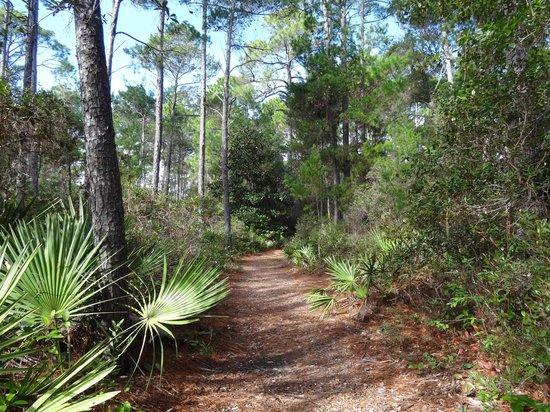 Oak Tree Nature Park