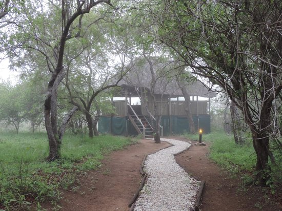 KwaMbili Game Lodge : the Hide, where we could watch animals drink at the small pond