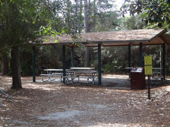 Oak Tree Nature Park: picnic pavillion