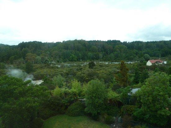 Holiday Inn Rotorua: Whakarewarewa thermal activity.