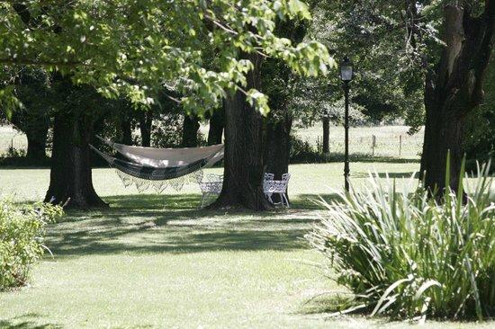 San Ceferino Hotel & Spa: Hammocks!  Did I mention the hammocks?!