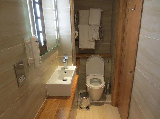 Comfort Inn Hyde Park : compact but nice bathroom