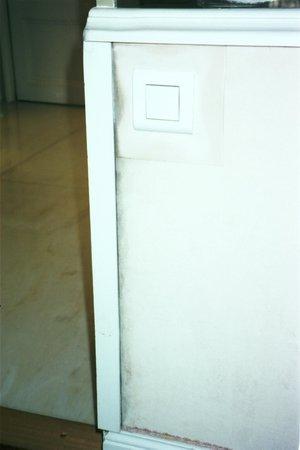Hotel Negresco : un palace dites vous?