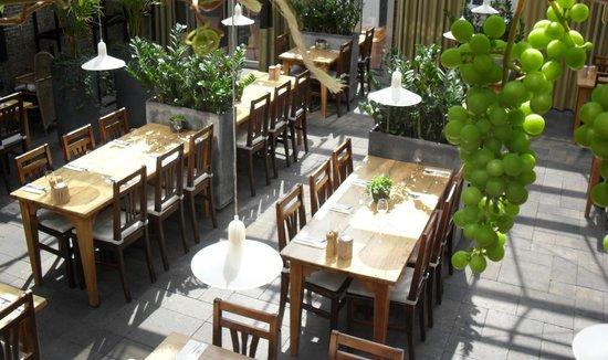 Eet- en Proeflokaal de Kurk: Indoor garden by day