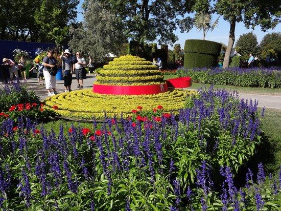 Montreal Botanical Gardens: Lavender Field
