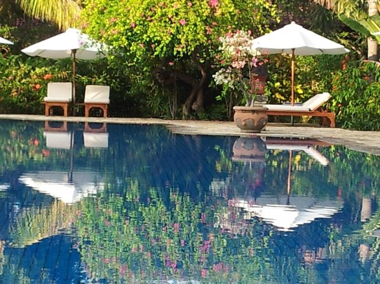 Matahari Beach Resort & Spa : Pool