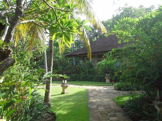 Matahari Beach Resort & Spa : Exclusive Landscape