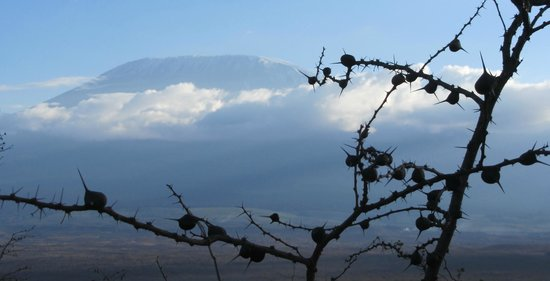 Satao Elerai: Spectacular views of Mt. Kilimanjaro